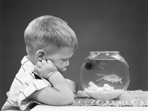 h-armstrong-roberts-boy-leaning-head-on-hand-staring-at-lone-goldfish-in-fishbowl