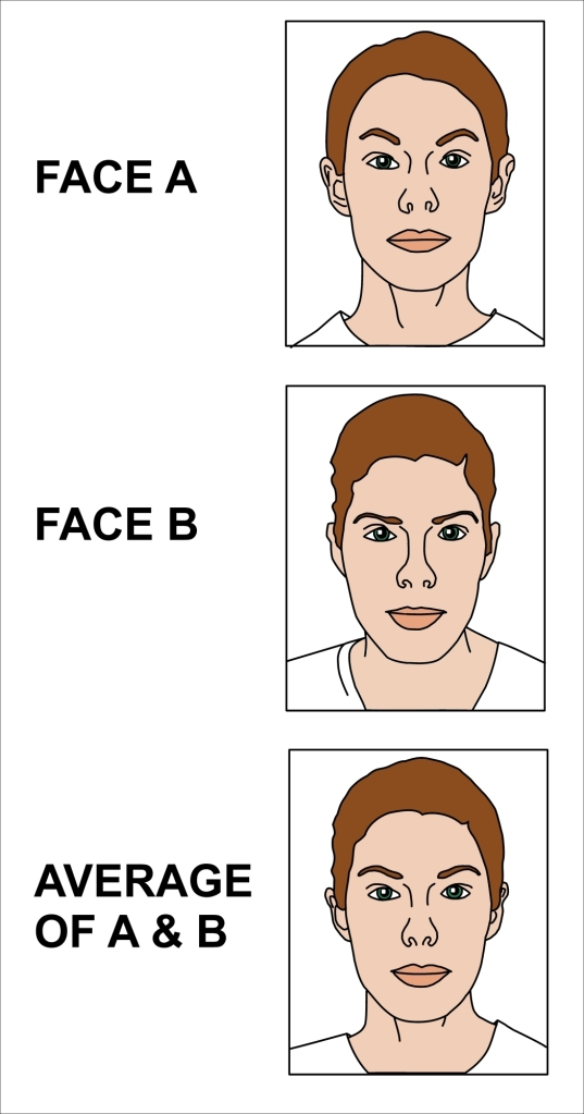 Average_of_two_faces_2